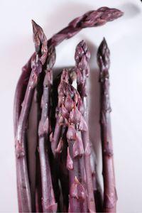 Asparagus purple