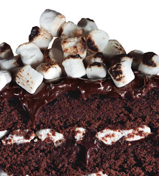 Mare_chocolate_malt_cake_v