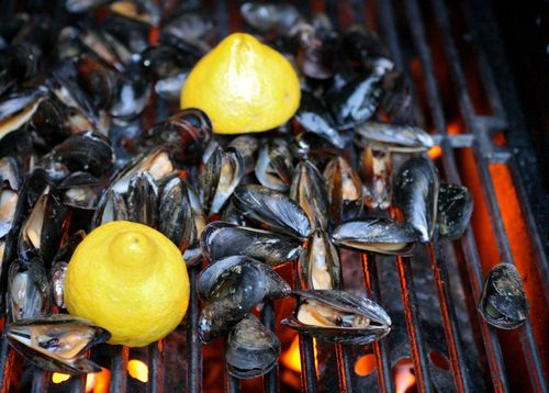 Grilled mussels1