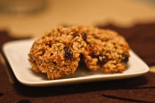 EF_Gluten Free Oatmeal Cookies