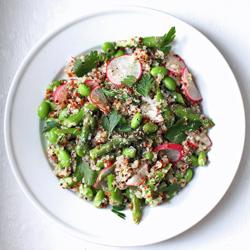 Quinoa salad asparagus radish edamame 250