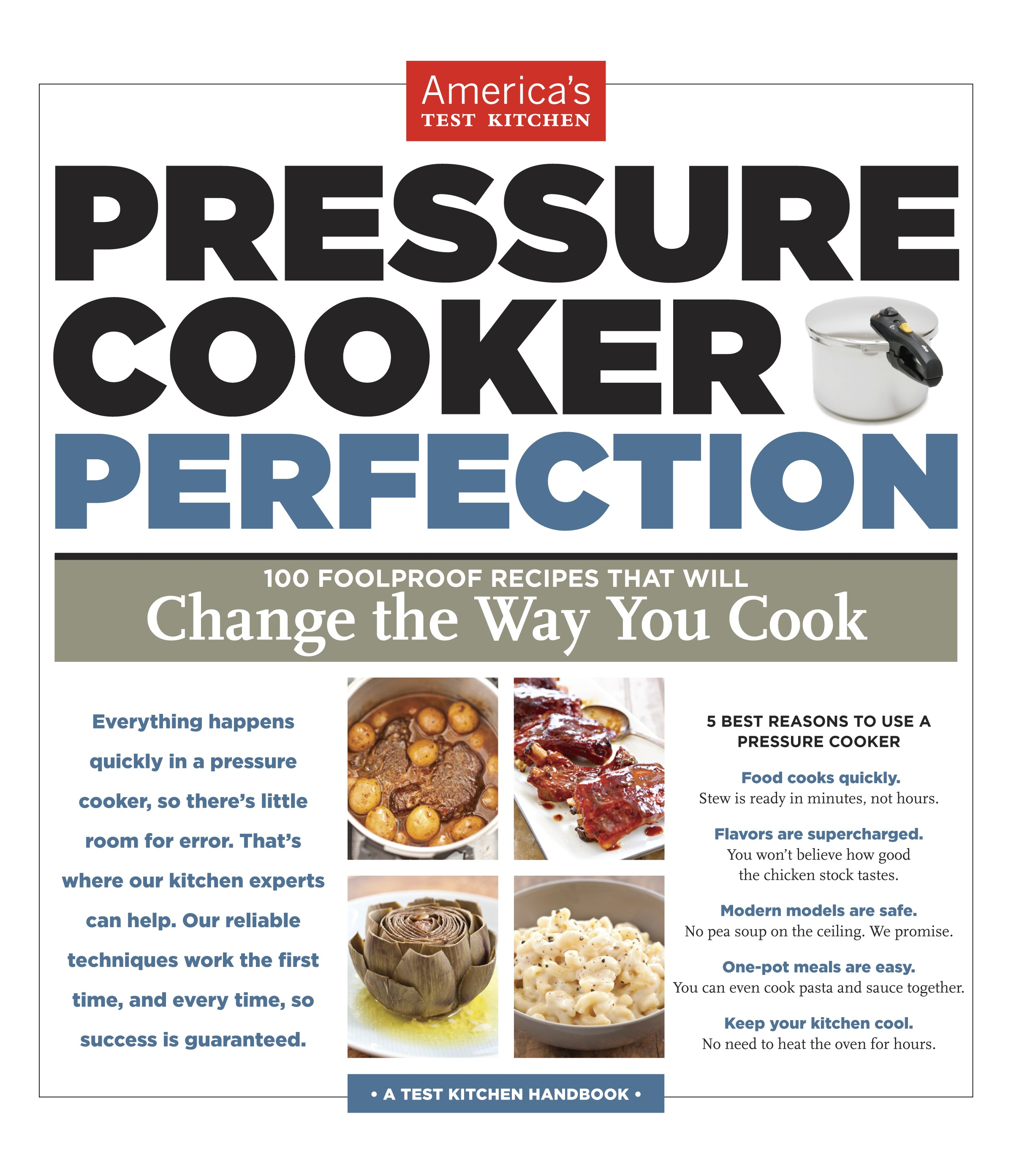 the bitten word: pressure cooker pork vindaloo