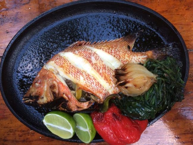 Hartwood fish
